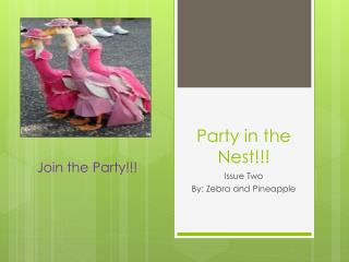 Party in the Nest!!!
