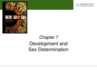 Development and  Sex Determination