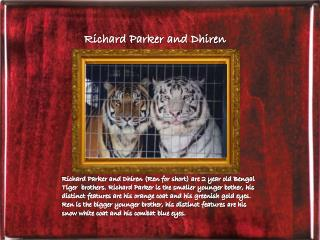 Richard Parker  and Dhiren