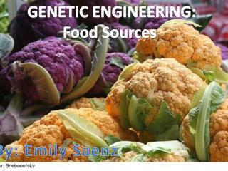 GENETIC ENGINEERING: Food Sources