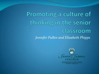 Promoting a culture of thinking in the senior classroom
