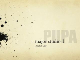 major studio 1