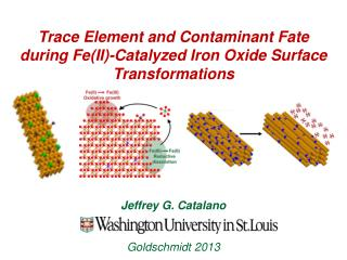 Trace  Element  and  Contaminant Fate  during Fe(II )-Catalyzed Iron Oxide Surface Transformations
