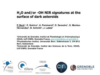 H 2 O and/or -OH  NIR signatures at the surface of dark asteroids