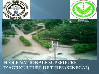 ECOLE NATIONALE SUPERIEURE D�AGRICULTURE DE THIES (SENEGAL)