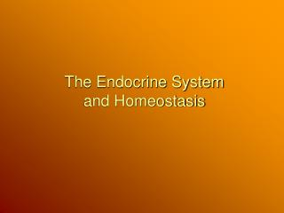 The Endocrine System and Homeostasis
