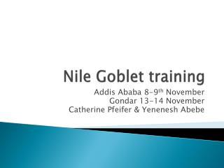 Nile Goblet training