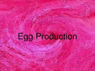 Egg Production
