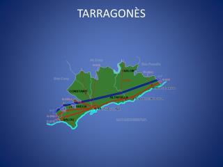 TARRAGON�S