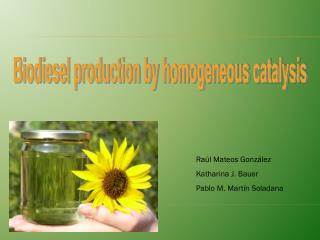 Biodiesel production by homogeneous catalysis