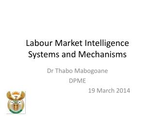 Labour Market Intelligence Systems and Mechanisms