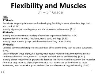 Flexibility and Muscles