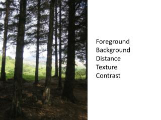 Foreground Background Distance Texture Contrast