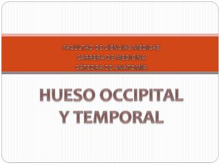 FACULTAD DE CIENCIAS MÉDICAS CARRERA DE MEDICINA CÁTEDRA DE ANATOMÍA HUESO  OCCIPITAL Y TEMPORAL