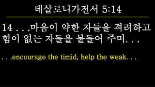 14  . . . 마음이 약한 자들을 격려하고 힘이 없는 자들을 붙들어 주며 . . . .  . .encourage the timid, help the weak. . .
