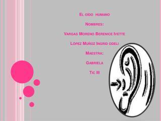 El oído y sus partes