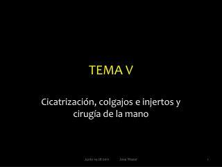 TEMA V
