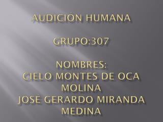 Audición humana  grupo:307 N ombres:  Cielo  M ontes de oca Molina  José  G erardo Miranda Medina