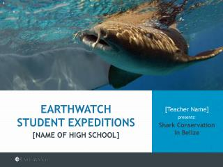 [Teacher Name]  presents: Shark Conservation in Belize