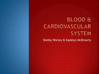 Blood & Cardiovascular System