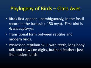 Phylogeny of Birds – Class Aves