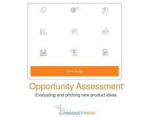 Opportunity Assessment *