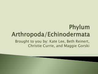 Phylum Arthropoda / Echinodermata