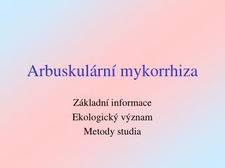 Arbuskul ární mykorrhiza