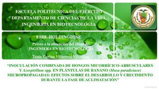 ESCUELA POLITÉCNICA DEL EJÉRCITO DEPARTAMENTO DE CIENCIAS DE LA VIDA INGENIERÍA EN BIOTECNOLOGÍA