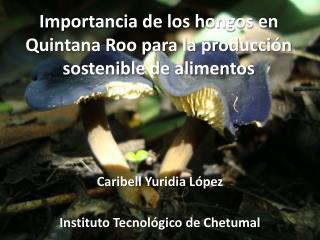 Importancia de los hongos en Quintana Roo para la producción sostenible de alimentos