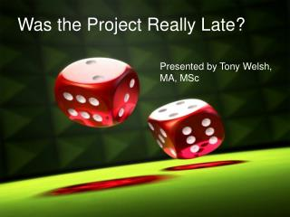 Was the Project Really Late?