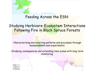 Feeding Across the ESN:
