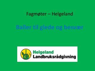 Fagmøter – Helgeland Baller til glede og besvær