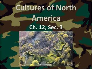 Cultures of North America