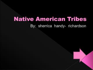 Native  A merican Tribes