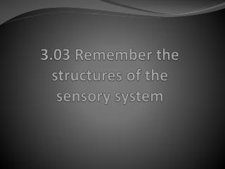 3.03 Remember the structures of the  sensory system