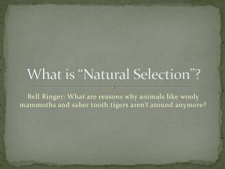 "What is ""Natural Selection""?"