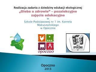 Realizacja zadania z dziedziny edukacji ekologicznej