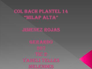 """COL BACH PLANTEL 14 """"MILAP ALTA"""" JIMENEZ ROJAS  GERARDO 207 TIC 2 YANELI TELLES MELENDES  2011-A"""