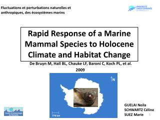 Rapid R esponse  of a Marine  Mammal Species  to  Holocene Climate  and Habitat Change