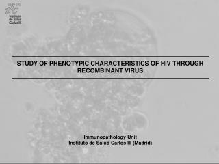 STUDY OF PHENOTYPIC CHARACTERISTICS OF HIV THROUGH RECOMBINANT VIRUS