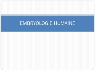 EMBRYOLOGIE HUMAINE