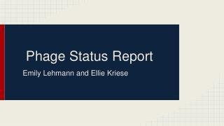Phage Status Report