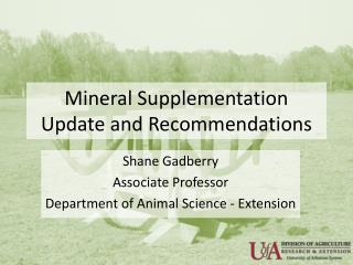 Mineral Supplementation Update and Recommendations