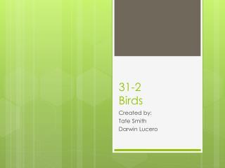 31-2 Birds
