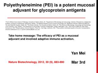 Polyethyleneimine  (PEI) is a potent mucosal  a djuvant for glycoprotein  antigents