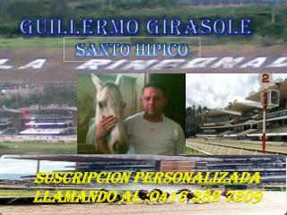 GUILLERMO GIRASOLE