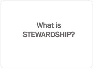What is STEWARDSHIP?