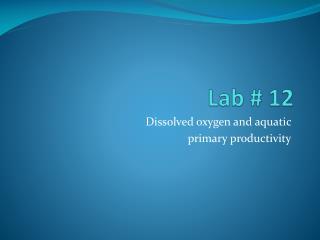 Lab # 12
