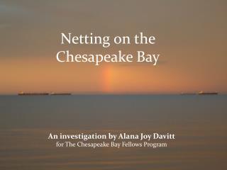 Fishing and Netting on the Chesapeake Bay